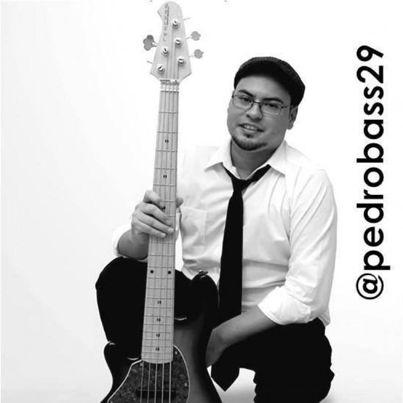 pedrobass29 musicos bajista world music barcelona